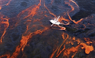 Oil Spill photo by Gay, AP May 28, 2010