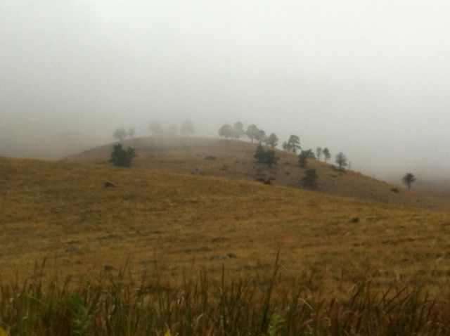 Foggy Foothills