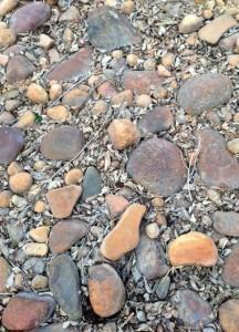 Rocky Ground