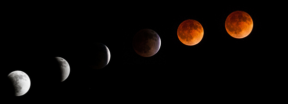 Lunar Eclipse Photo Series taken by Tyler Leavitt