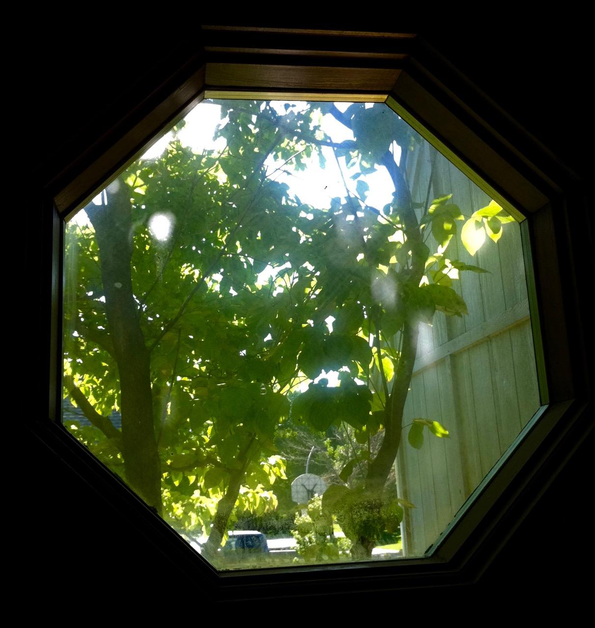 Window Portal